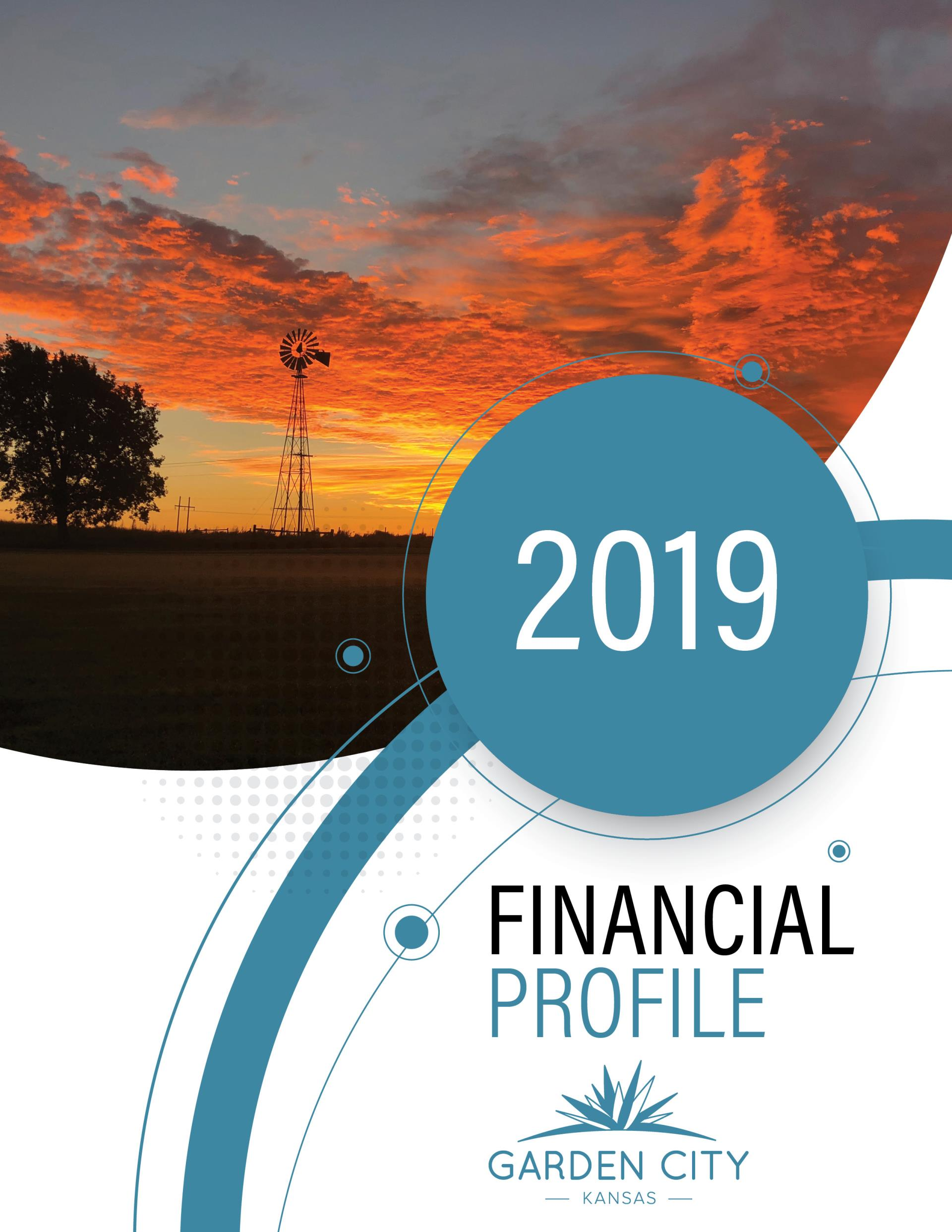City of Garden City Financial Profile